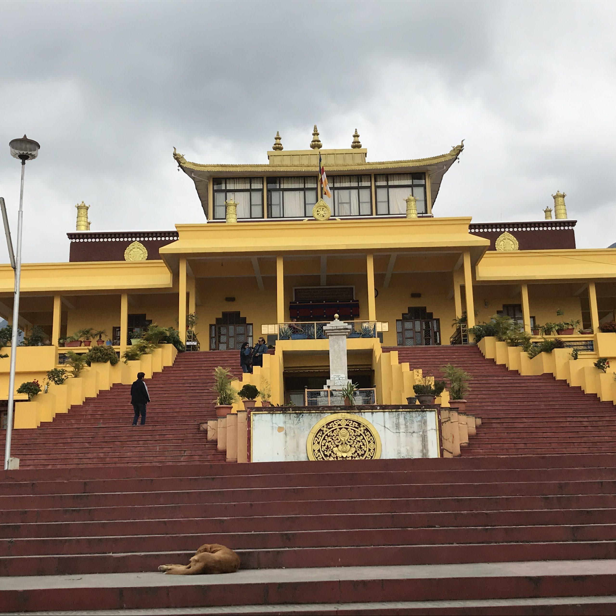 Day 02: Dharamsala: Home to Dalai Lama